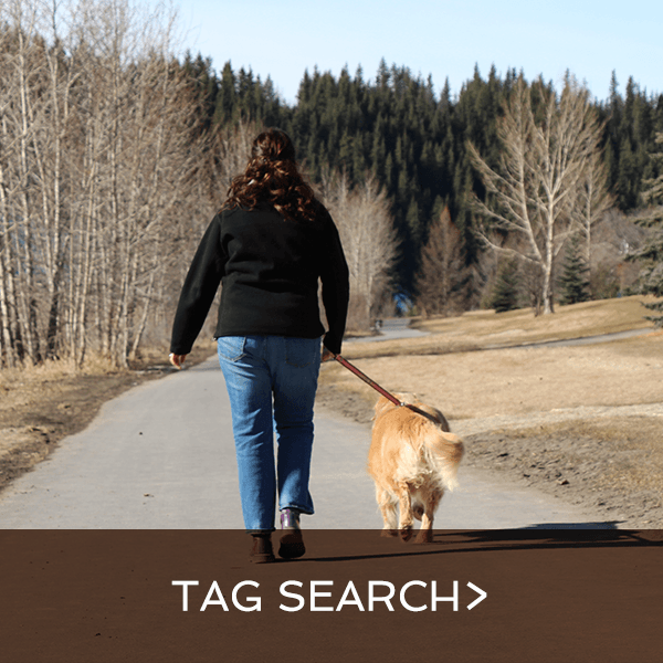 tag search