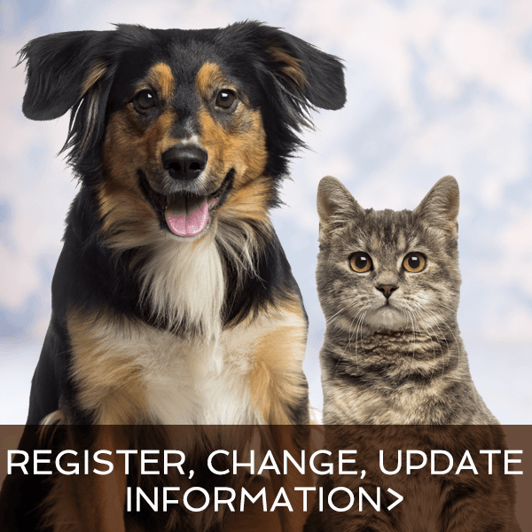RegisterUpdateChangeInfo